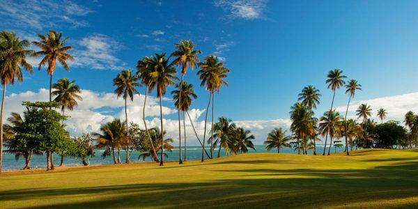 golfcamp-fpo