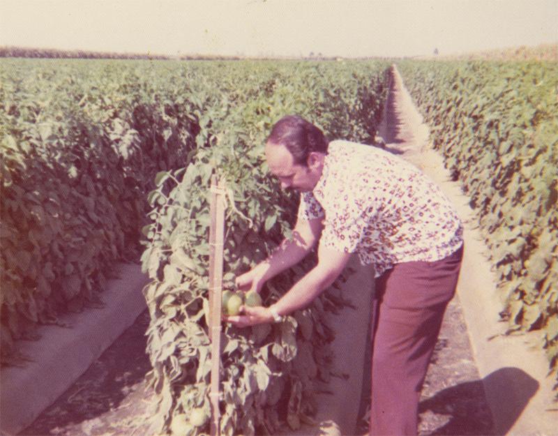 san-miguel-fertilizer